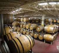 StJulian_MainWinery_cellar